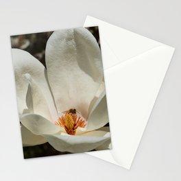 Magnolia Blossom & Bee Stationery Cards