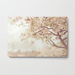 Cherry Tree Garden Metal Print
