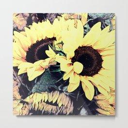 Beautiful Sunflowers Metal Print