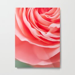 rose abstraction Metal Print