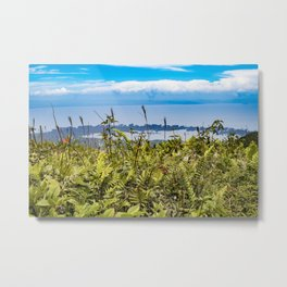 Looking Through Tall Grass and Wildflowers at the Lake on top of Mombacho Volcano, Nicaragua Metal Print