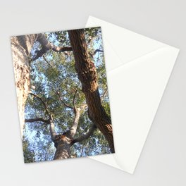 A Shattered Sky Stationery Cards