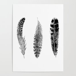 Feather Trio | Black and White Poster