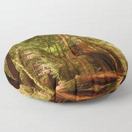 Muir Woods Walkway Floor Pillow