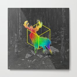Catch The Reinbow Metal Print
