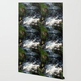 Shady Glen above Haviland Lake Wallpaper