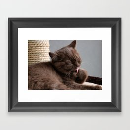 Daantje washday Framed Art Print