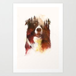 One night in the forest Art Print