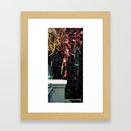 An rioct elves 3 (le royaume des elfes 3) Framed Art Print