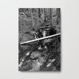 Into a Fathomless Chaos Metal Print