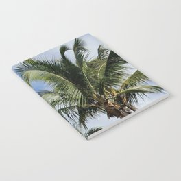 Palms in Puerto Rico Notebook