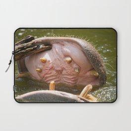 Hippo Toothpick Laptop Sleeve