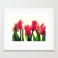tulips Framed Art Prints featuring Tulips by 2sweet4words Designs
