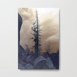 Dead Tree At Needles Highway Metal Print