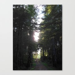 Where the Road Meets the Sun Canvas Print