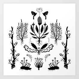 Plants, Decay Art Print