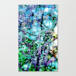 Why work out? Winter two Canvas Print