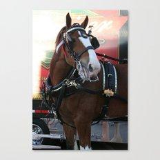 BUDWEISER Clydesdale Canvas Print