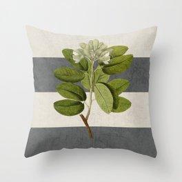 botanical stripes 5 -gray Throw Pillow