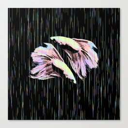 Pastel Siamese Fighting Fish In Electro Synchronicity Canvas Print