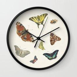 Ensemble de papillons  {II/II} Wall Clock