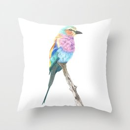 Lilac Breasted Roller - Colored Pencil Throw Pillow