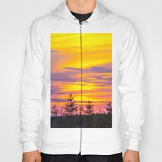 Sunset above the forest Hoody