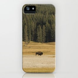 Take it in Stride iPhone Case