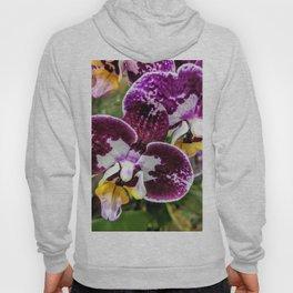 Wine Orchids Hoody