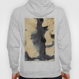Washes Hoody