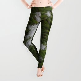 Snow and Evergreen Leggings