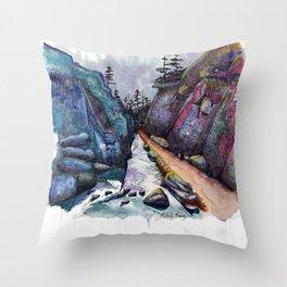 Eleven Mile Canyon, Colorado Throw Pillow