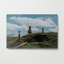 Ewe and her lamb on Haworth Moor Metal Print