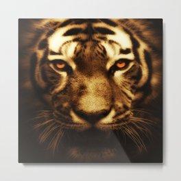 Tiger Eyes Big Cats Wild Cats Tigers Art Metal Print