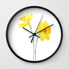 two botanical yellow daffodils watercolor Wall Clock