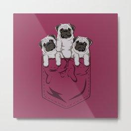 Pocket Pugs_Rose Metal Print