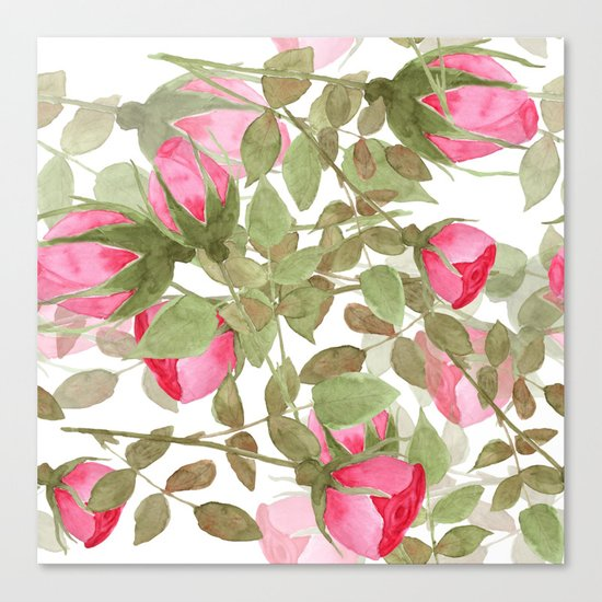The buds of tender roses on a white background . Retro . Canvas Print