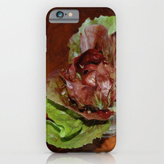 The Birthday Lettuce iPhone & iPod Case
