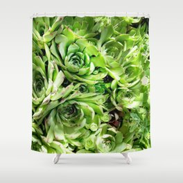 GREEN HENS N' CHICKS SEDUMS-SUCCULENTS Shower Curtain