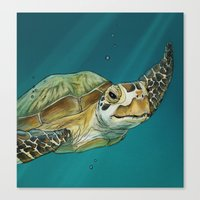 sea turtle Canvas Prints featuring Sea Turtle by Michelle Kondrich