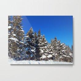 Winter forest roadside Metal Print