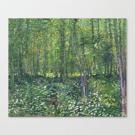1887-Vincent van Gogh-Trees and undergrowth Canvas Print
