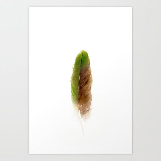Green Parrot Feather Art Print