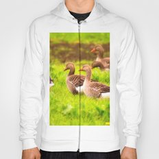 Wild geese in the march Hoody