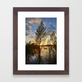 """""""Sun through the trees"""". Spring sunset. Framed Art Print"""
