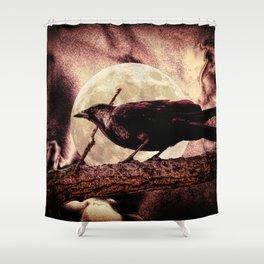 Crow Black Bird Full Moon Surreal Gothic Home Decor Art A143 Shower Curtain