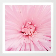 Chrysanthemum heart Art Print