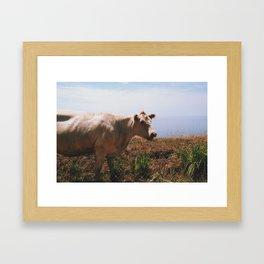 Cali Cow Framed Art Print
