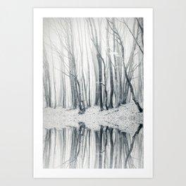 trees and fog Kunstdrucke