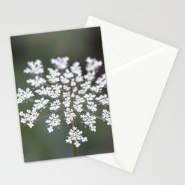 Sweet Breeze Stationery Cards